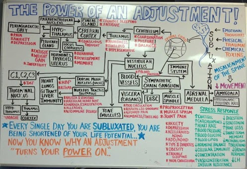 The_Power_of_the_Chiropractic_Adjustment