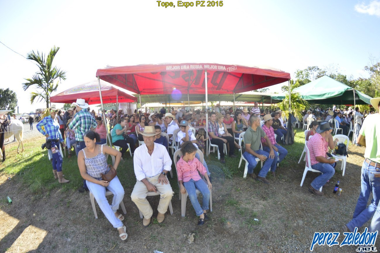 Tope, Expo PZ 2015 (513)